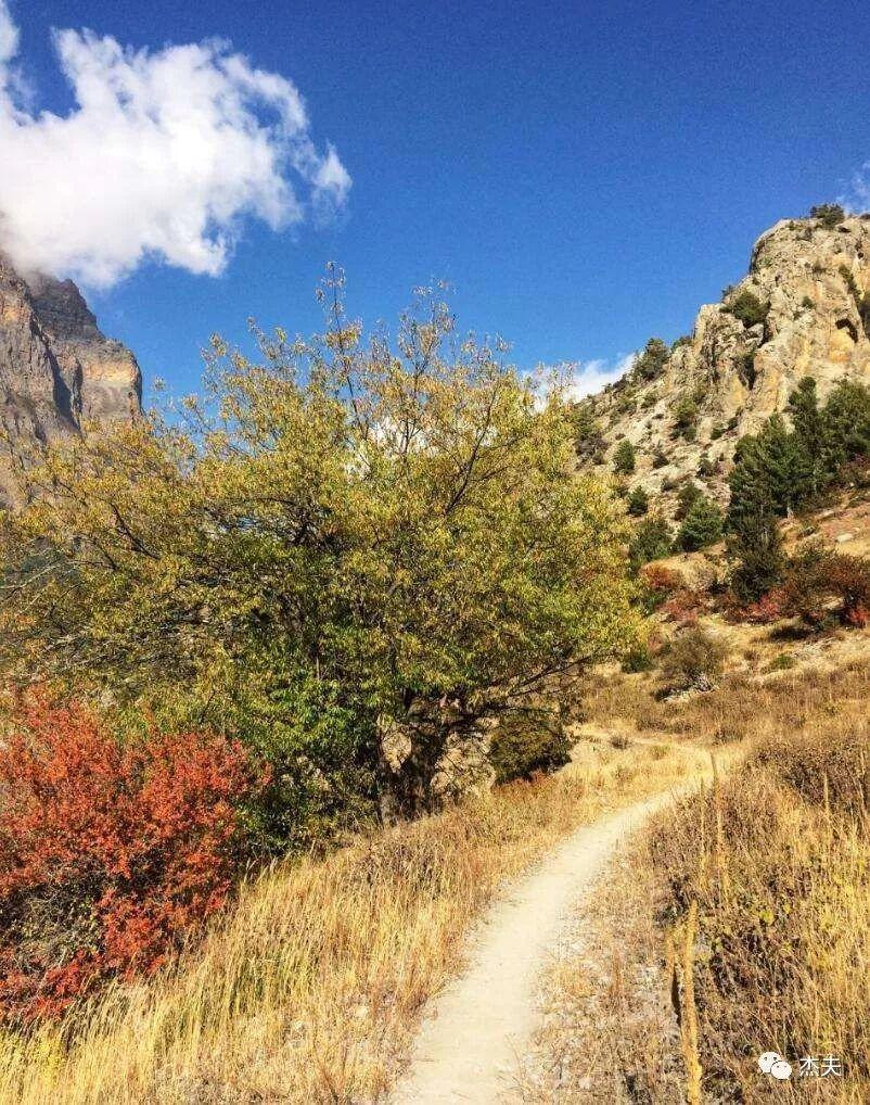 ACT徒步:在3000+海拔,走到天黑迷路(Ⅱ)