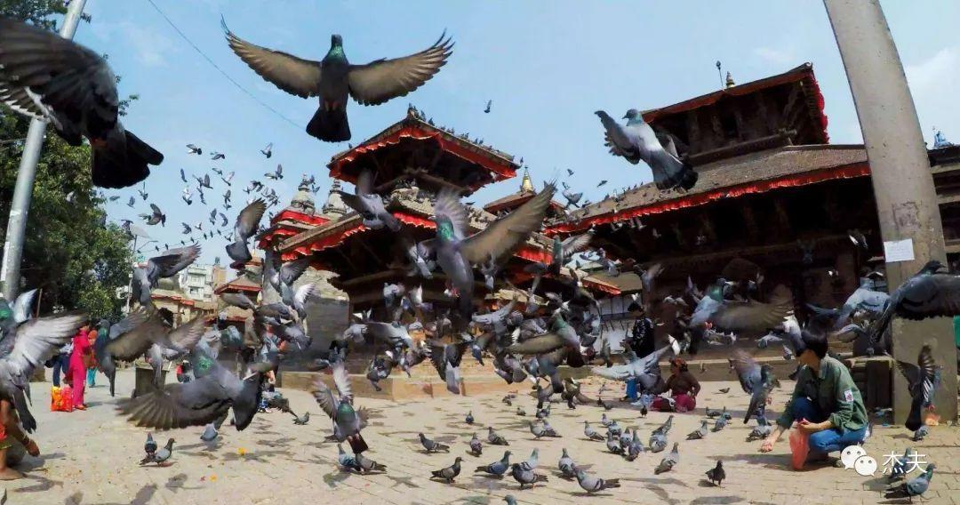 加德满都,不像城市的尼泊尔首都